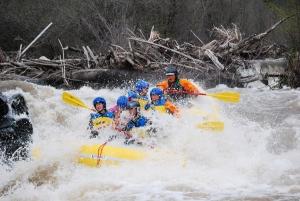 "Rafting Nugget Falls during ""Big Water"""